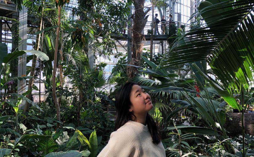 CAPAL Scholar Spotlight Amanda Yuen '20
